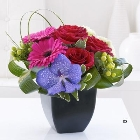 Rose, Gerbera and Vanda Orchid Arrangement *